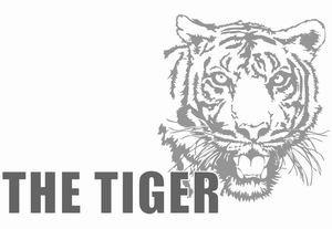 tiger foam compactor